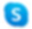 Skype 아이콘.png