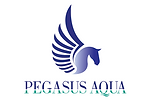 pegasus mret logo low res for website si