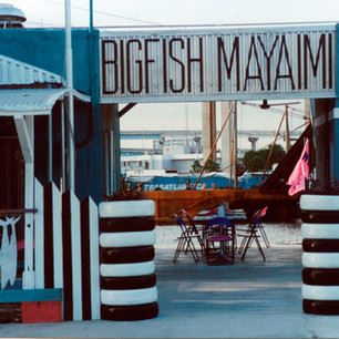 1996 | BIGFISH MAYAIMI  RESTAURANT