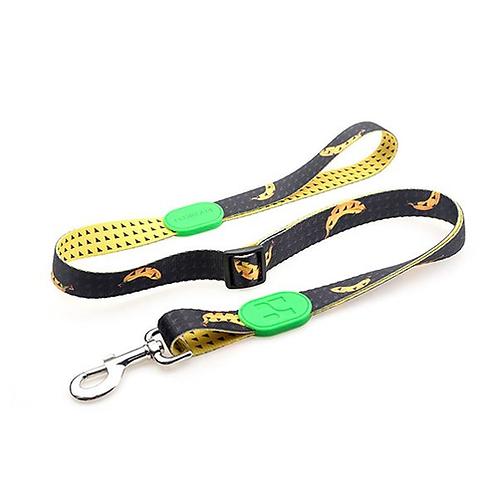 Soft Dog Leash Pet Products New Design Dog Walking Training Dog Leads Stock