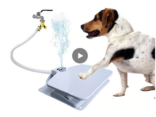 Outdoor Pet Feeder Stampede Dog Water Drinking Fountain For Cat Dog