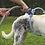 Thumbnail: Pet Dog Cat Bathing Cleaner 360 Degree Shower Tool Kit Dog Cleaning Washing Bath
