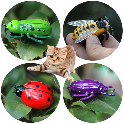 NEW 4 Style Electronic Dog Cat Play Interactive Toys Auto Running Insect Pet