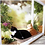 Thumbnail: Cute Pet Hanging Beds Bearing 20kg Cat Sunny Seat Window Mount Pet Cat Hammock