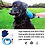 Thumbnail: Pet  messaging Glove Pet Shower Sprayer Wash Tool Outdoor Gar