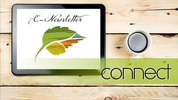 Connect with Seasons Weekend by Nicole Johnson