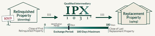 IPX1031-what-is-a-exchange-infographic.j