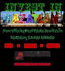 Invest v1.png