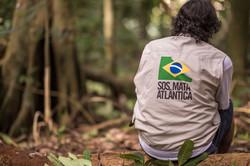 SOS Mata Atlântica // Viva a Mata