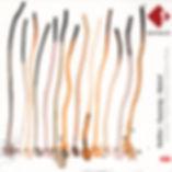 Cover der Ö1-CD des coro siamo und chorus viennenesis. Komponisten: Anton Heiller, Wolfgang Sauseng, Florian Maierl; Sprecher Cornelius Obonya, Cover: Sonja Fachhofer