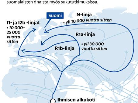 Dna kertoo, mistä suomalaisten esi-isät ja esiäidit tulivat