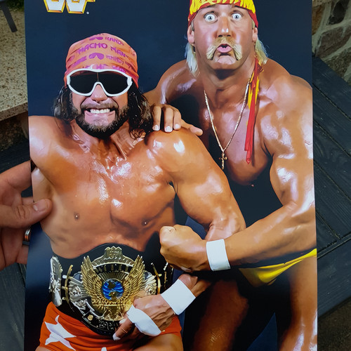 Wwf Wrestling Posters Hasbromaniacs Shop All
