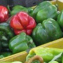 Warren County Farmers and Artisans Market
