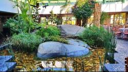 ajardinamiento estanque La Casa Verde