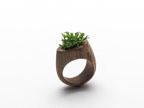 Wood ring Botanica