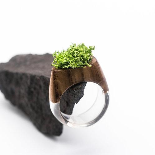 Кольцо Botanica (в наличии размер 19)