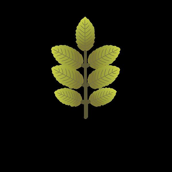 logo_noborder-color_edited.png