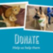 Donate Graphic B