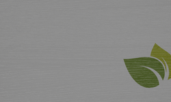Web Banner2