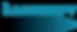 Illumisoft logo.png