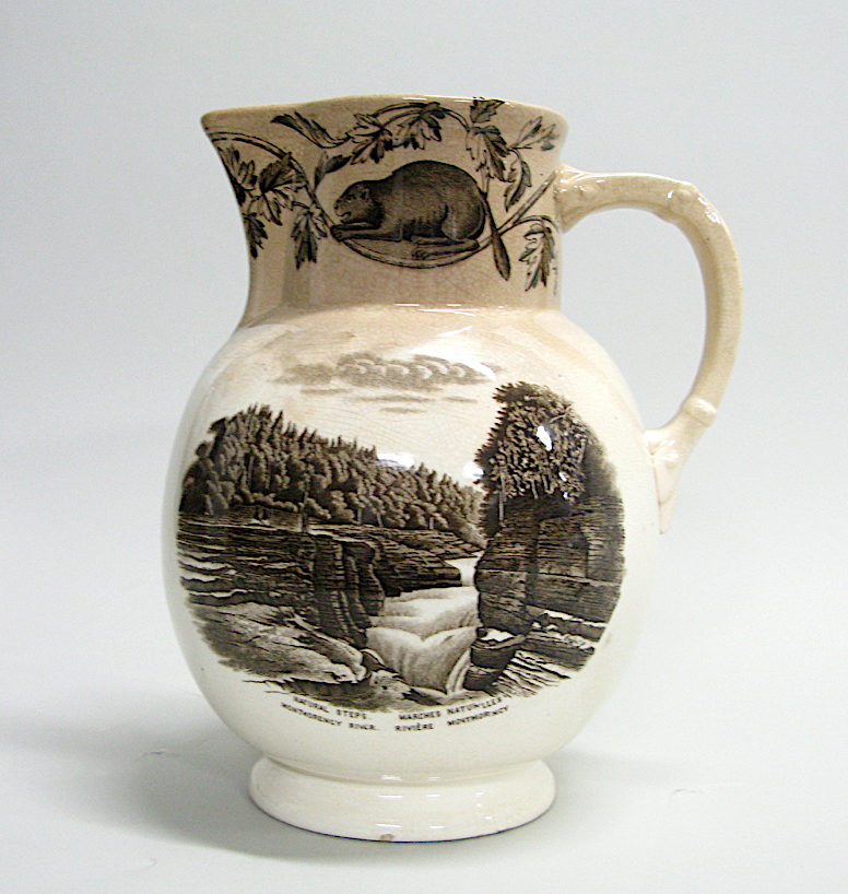 Pitcher - Rivière Montmorency