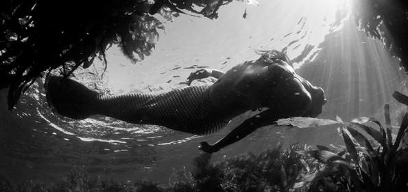 Mermaid at Catalina Island