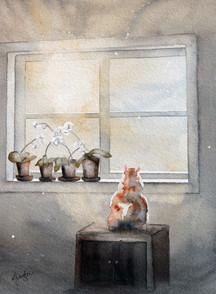 He Waits By the Window and Wonders