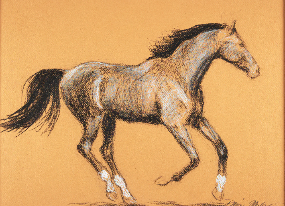 Horses in Action 12