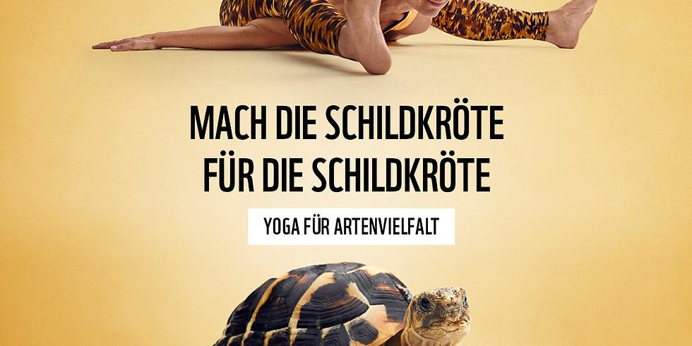 ONLINE Yoga für mehr Artenvielfalt