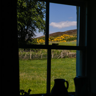 View from one of the guest bedrooms