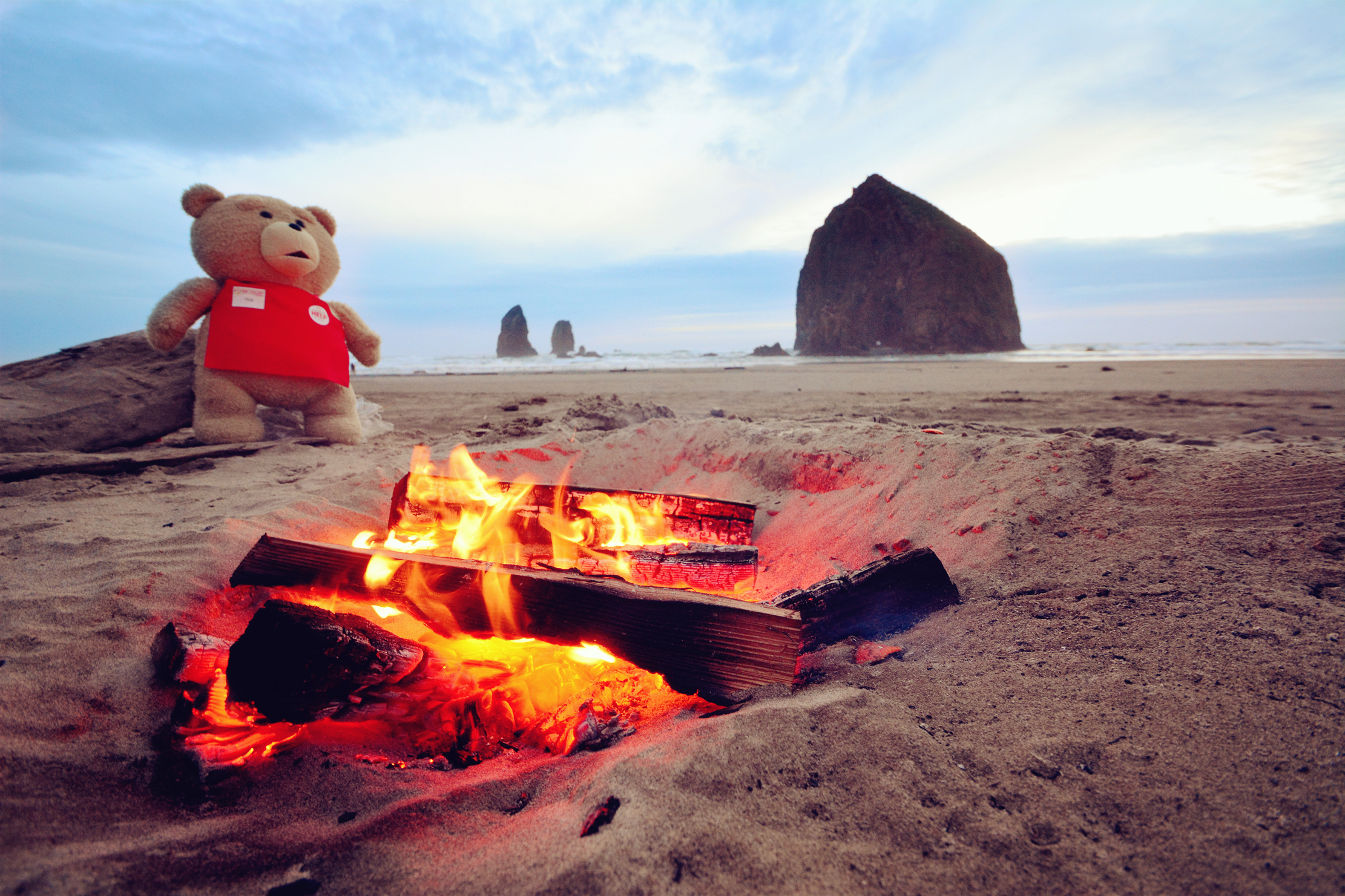 Ted, Cannon Beach