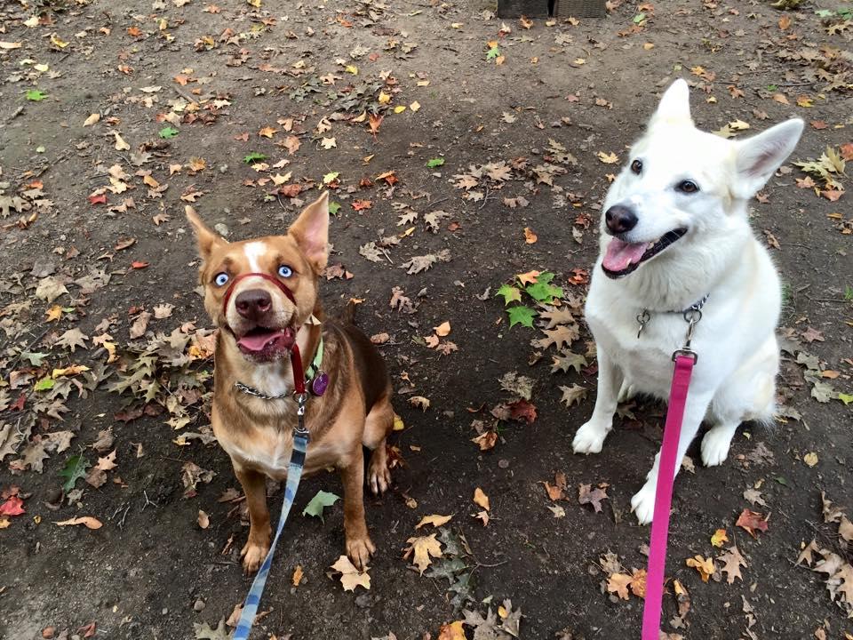 Sasha&Maia