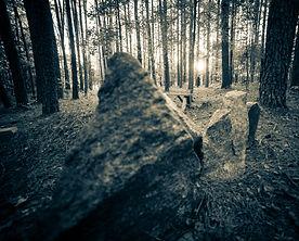 graveyard-76.jpg
