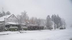 IMG_snow revised25615 copy