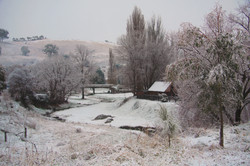 winter scene warmer_5640