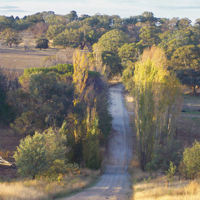 Carcoar & Millthorpe Bridge the Gap