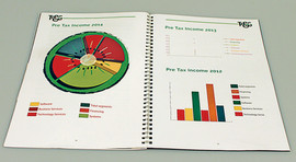 Graphics for an Annual General Report