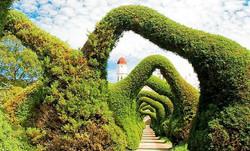 Garden Unique