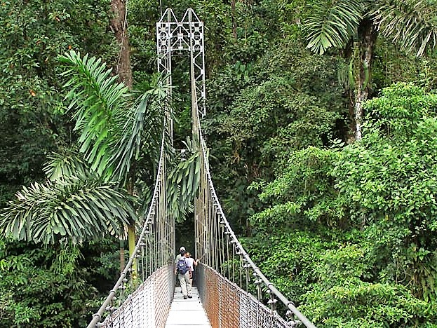 Arenal bridge