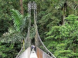 Arenal bridge