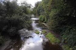 Woods Creek Monroe