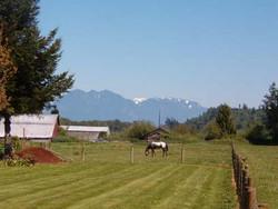 Farmland outside of Monroe