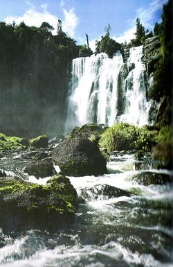 Waikato Waterfalls