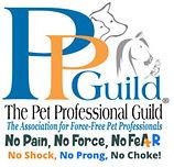 PPG Logo Small.jpg