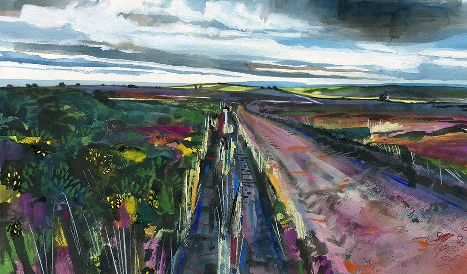 Exmoor Footpath, Exmoor Original Watercolour Painting