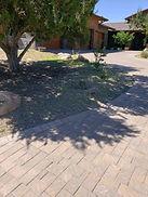 IMG_6240 Thorley Clean-up.JPG