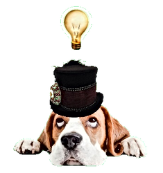 Bassett Hound in Top Hat with Idea Lightbulb