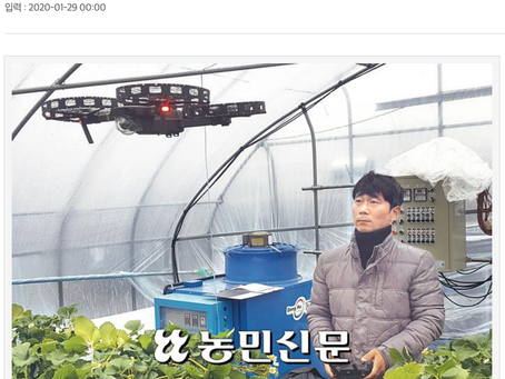드론전망 / 드론으로 딸기 인공수정한다_농민신문 발췌