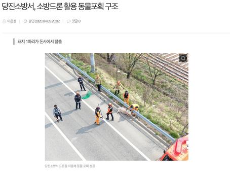 드론전망 / 소방서, 소방드론 활용 동물포획 구조_동양일보 발췌