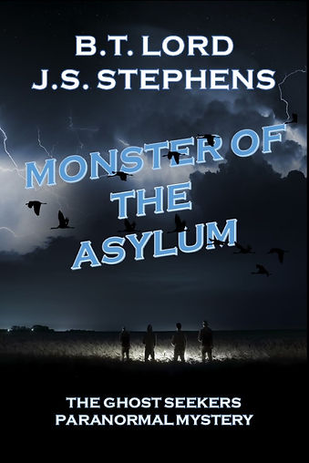 YA cover asylum idea.jpg